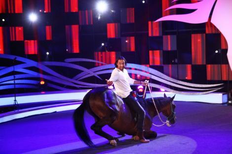 """Actorul Denis Ștefan, în rolul vieții lui! Relația pe care o are cu Ardo, calul său, i-a uimit pe jurații """"Ham Talent"""""""