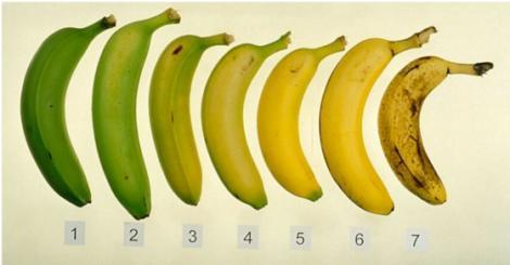 Verzi sau bine coapte? Diferența URIAȘĂ între bananele pe care le găsești pe rafturile supermarketurilor