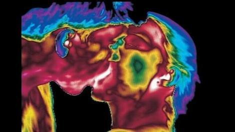 FOTO: Cum arată corpul uman la interior! Imagini INCREDIBILE, ce te vor lăsa fără cuvinte