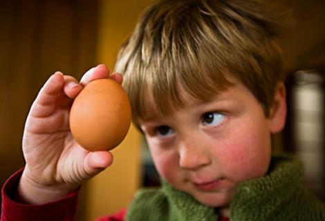 Curiozități despre ouă! Te vei uita altfel în farfurie dacă afli aceste lucruri!