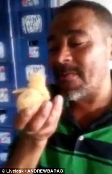 Nebunie curată sau farsă perfectă!? S-a filmat în timp ce înghițea un pui de găină viu și a revoltat o lume întreagă