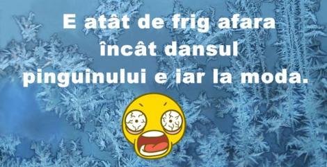 Ha, ha, ha! Astea sunt cele mai tari GLUME despre cât de frig este în România în aceste zile