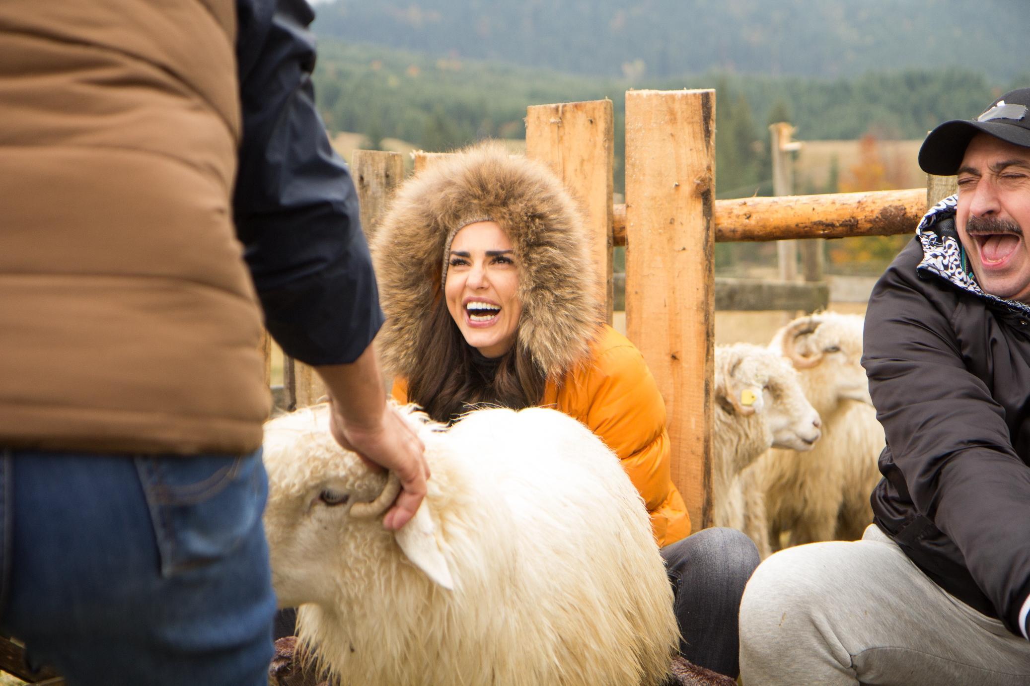 Lavinia Pârva și Romică Țociu au râs cu lacrimi la mulsul oilor