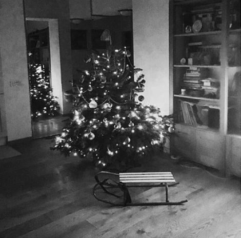 """Mirela Boureanu Vaida așteaptă Crăciunul împreună cu familia sa: """"Momente de fericire. Momente magice!"""""""