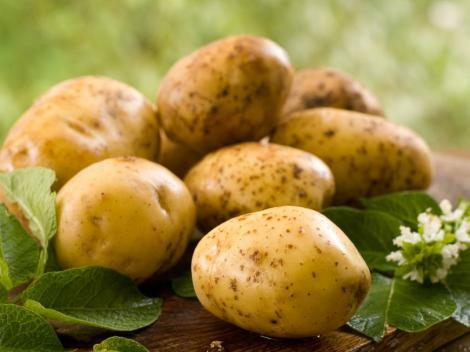 Ai observat asta pe cartofi? Aruncă-i imediat!