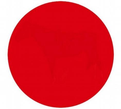 Află şi tu dacă ai vedere de AVIATOR! 90% dintre cei care au încercat nu au reuşit! Tu ce vezi in interiorul cercului?