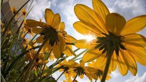 Ploi, furtuni și cod galben, o amintire de acum! În sfârșit, ne vom bucura de razele soarelui!