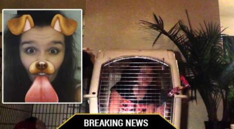 A îndrăznit să facă un selfie și-a primit pedeapsă! O tânără a fost închisă într-o cușcă de tatăl său și hrănită cu mâncare pentru câini