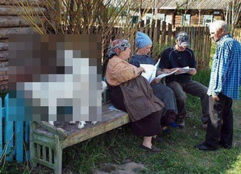România mereu surprinzătoare. Două căprițe neastâmpărate se joacă de mama focului sub ochii unor bătrâni!
