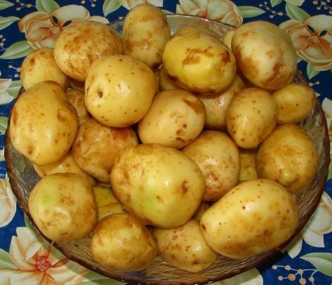 Efect garant! Ce se întâmplă dacă îţi pui cartof crud pe frunte. Nu vei mai avea nevoie de medicamente!