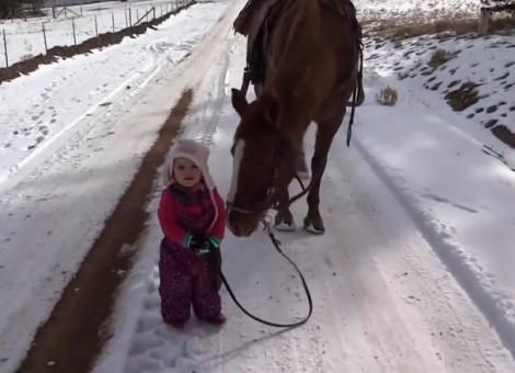 Întâlnire de gradul de zero! Părinții și-au lăsat fiica să se apropie de cal, dar ceea ce a urmat i-a lăsat mască pe toți!