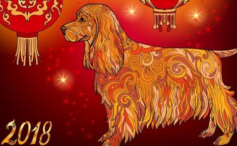 Horoscopul chinezesc nu dă greș niciodată! 2018 este anul Câinelui de Pământ, ce aduce vești importante pentru toate zodiile!