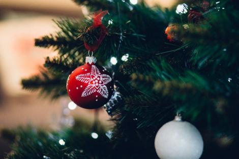 Trucuri pentru Crăciun. Ce se întâmplă dacă pui votcă la rădăcina bradului împodobit