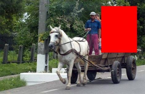 FOTO: Doi ROMÂNI au ajuns de RÂSUL LUMII! Ce au putut să care în CĂRUŢĂ