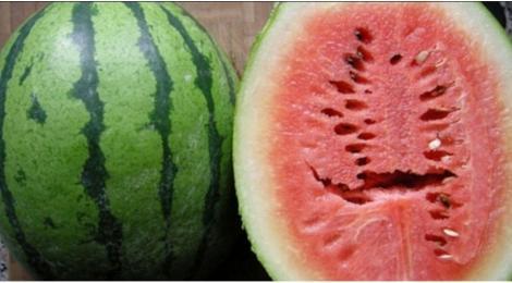 Dacă tai un pepene în două și vezi că are o crăpătura în miez, aruncă-l imediat! Este un indiciu clar că a fost crescut cu îngrășăminte chimice