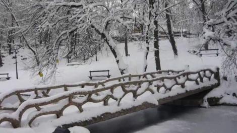 Vremea 18 ianuarie. În Craiova, soarele își face apariția, dar atmosfera se menține rece
