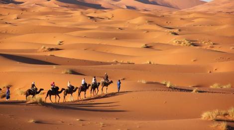 Cum au reușit oamenii să întârzie apariția deșertului Sahara cu 500 de ani