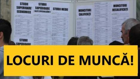 Se fac ANGAJĂRI într-un județ din România! Peste 700 de locuri de muncă sunt disponibile! Pentru cele mai multe nu se cer studii superioare