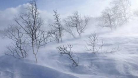 Vreme extremă în noiembrie și decembrie! România, lovită de două furtuni din Atlantic și Mediterană