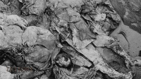 """10.000 de ostași români uciși, mișelește, în Moldova. """"Erau oase peste tot, călcai pe ele"""". Au făcut o piramidă din cranii"""