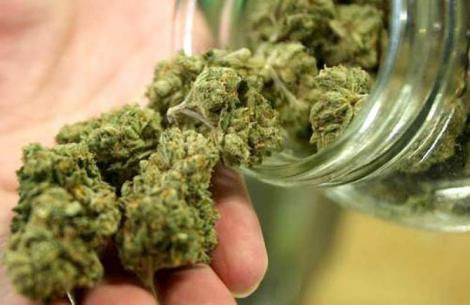 Încă o țară dorește legalizarea consumului de cannabis, organizând chiar și un referendum în acest scop