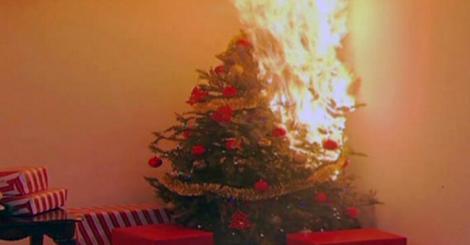 O familie, salvată de la moarte, în noaptea de Crăciun! Reacția patrupedului atunci când bradul familiei a luat foc