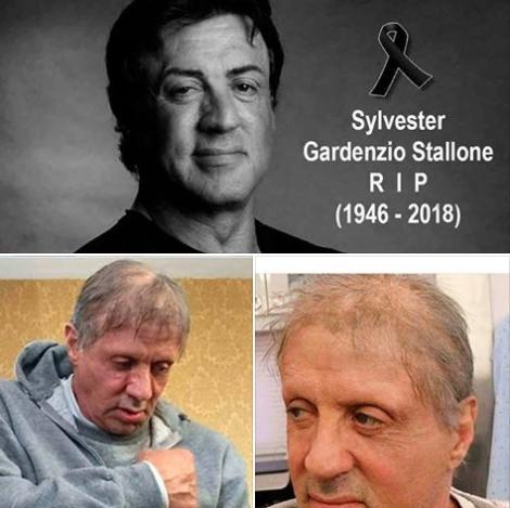"""""""Actorul Sylvester Stallone a murit!"""" Adevărul despre știrea care face înconjurul lumii"""