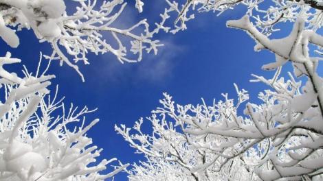 VREMEA 8 februarie, România. Vremea i-a speriat pe meteorologi! Schimbări anormale