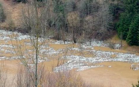 Imaginile rușinii în România: Sticle de plastic și alte mizerii plutitoare, pe apele umflate ale râului Arieș