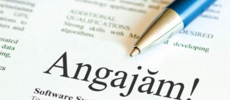 Se fac angajări! Sute de locuri de muncă pentru români! Salariul poate depăși 1.500 de euro