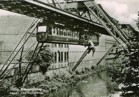 Un elefant se legăna pe o pânză de...Tuffi, pachidermul care a sărit dintr-un tren plin de pasageri, 12 metri, într-un râu. A mai trăit 39 de ani după aceea!!!
