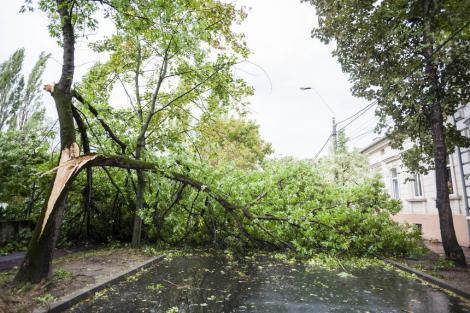 Zeci de gospodării, locuinţe şi drumuri inundate în urma ploilor torenţiale şi a furtunilor din ultimele 24 de ore. Imagini apocaliptice