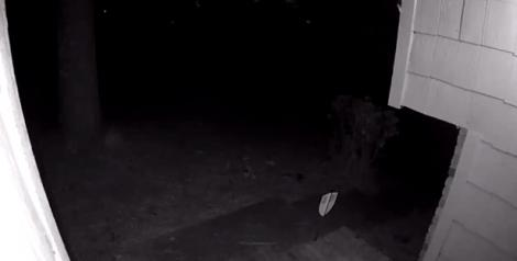 Femeia a vrut să vadă cine a sunat la ușă, dar a trăit un adevărat ȘOC! Ce au filmat camerele