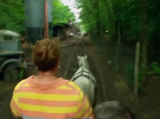 """Râzi cu lacrimi! Adriana Trandafir, la hățuri! Cătălin Oprișan: """"Nu mai scăpăm! Murim cu toții. Calul zboară cu 140 la oră"""""""