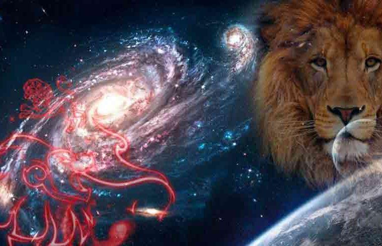14 adevăruri despre întâlnirea unui leu