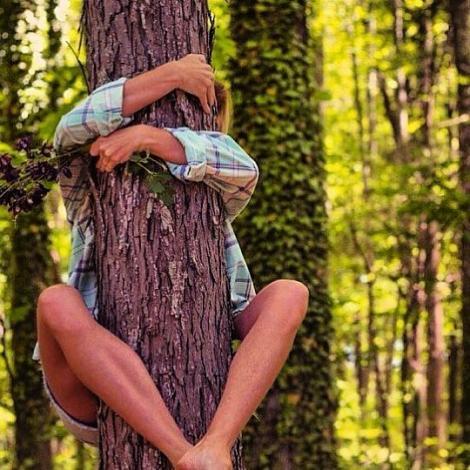 Ce zodie ești în horoscopul copacilor! Vei afla cine îți poartă mereu noroc