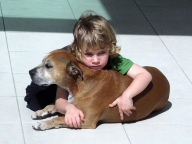De ce câinii trăiesc mai puțin decât oamenii! Explicația unui copil de șase ani te va face să LĂCRIMEZI