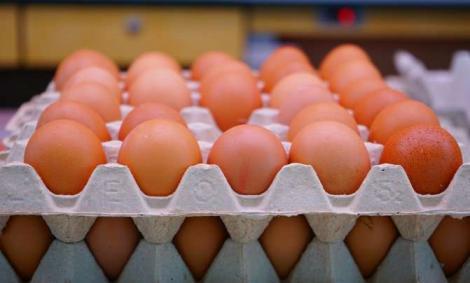 Ouă contaminate, cumpărate de români! Care sunt semnele ce te trimit IMEDIAT la medic!