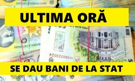 Vești bune pentru mii de români! În ce condiții pot să beneficieze de concediu de până la un an de zile și o indemnizație lunară de 1.700 de lei!