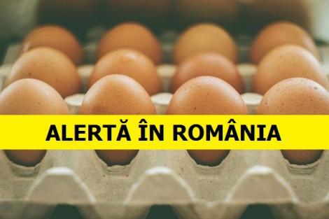 Ouă contaminate în România! Inspectorii sanitari au făcut o descoperire șocantă