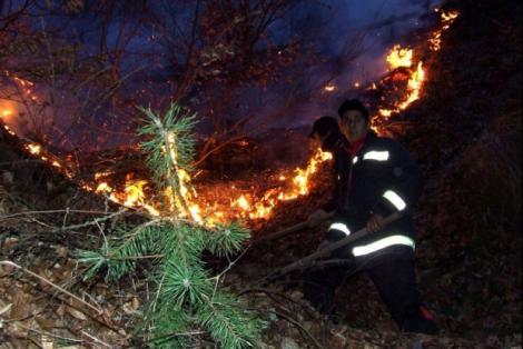 Și-a găsit sfârșitul într-un incendiu de vegetație uscată! O femeie de 81 de ani a murit cuprinsă de flăcări