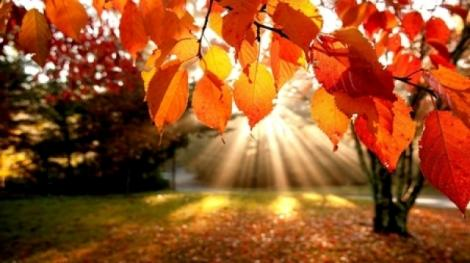 Vremea pe patru săptămâni, actualizată de ANM. Temperaturi mari în luna noiembrie!