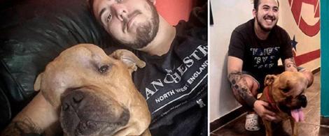 """A adoptat un câine malformat și bolnav de cancer pe care l-au respins toți: """"Vreau să-i ofer dragoste. Mi s-a spus că nu există tratament pentru boala lui..."""""""