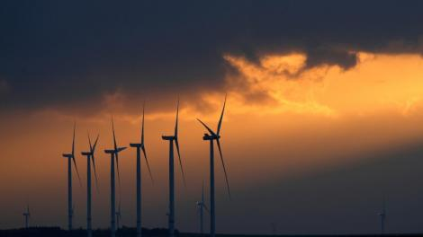 Google investeşte peste două miliarde de dolari pentru a-şi creşte producţia de energie regenerabilă