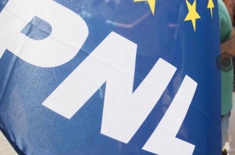 PNL: PSD şi Viorica Dăncilă s-au transformat într-un lansator continuu de fake-news. Dăncilă este cea care s-a folosit de resursele publice atât în campania pentru prezidenţiale, cât şi în cea pentru alegerile europarlamentare
