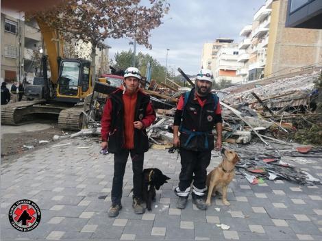 Câinii salvatori Challapa şi Billy din România participă la misiunea de căutare şi salvare a victimelor cutremurului din Albania - FOTO