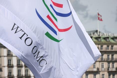 Uniunea Europeană a pledat la OMC pentru retragerea tarifelor impuse de Donald Trump importurilor de metale