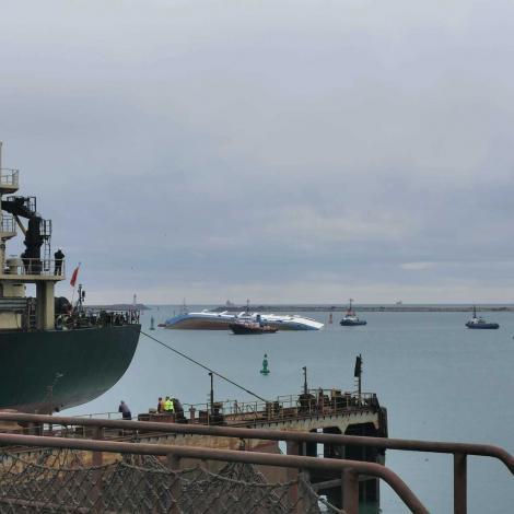 ANSVSA: Cadavrele oilor de pe nava eşuată în Portul Midia nu pot reprezenta o sursă de contaminare cu spori de antrax a apei mării sau a mediului din zona respectivă
