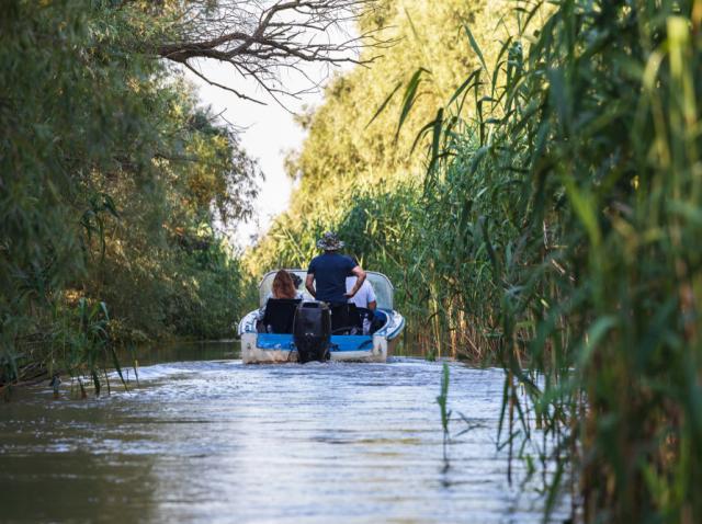 Pescuitul în Delta Dunării: care sunt principalii pești pe care îi poți prinde