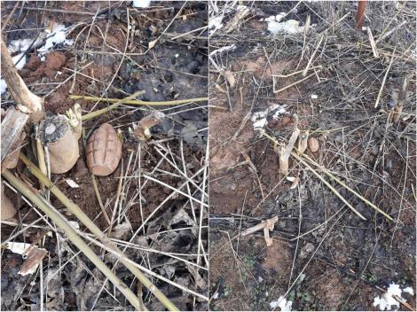 Descoperire șocantă într-un cimitir din județul Giurgiu!